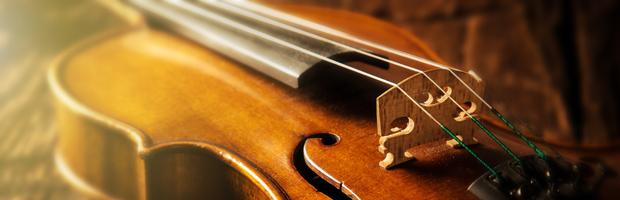 Emotional Violin Close-up